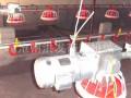 肉鸡螺旋喂料线 驱动装置 全国招商--沧州洪发畜牧机械有限公司
