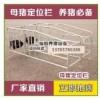 升级加重限位栏-定位栏 母猪定位栏