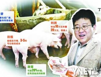 丁磊的网易猪场或是未来中国猪业的缩影